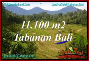 LAND IN TABANAN FOR SALE TJTB320