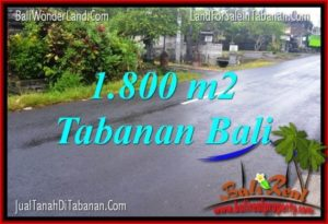 Exotic PROPERTY LAND IN TABANAN FOR SALE TJTB321