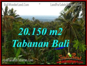 20,150 m2 LAND IN Tabanan Penebel BALI FOR SALE TJTB322