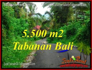 Magnificent PROPERTY LAND IN TABANAN BALI FOR SALE TJTB323