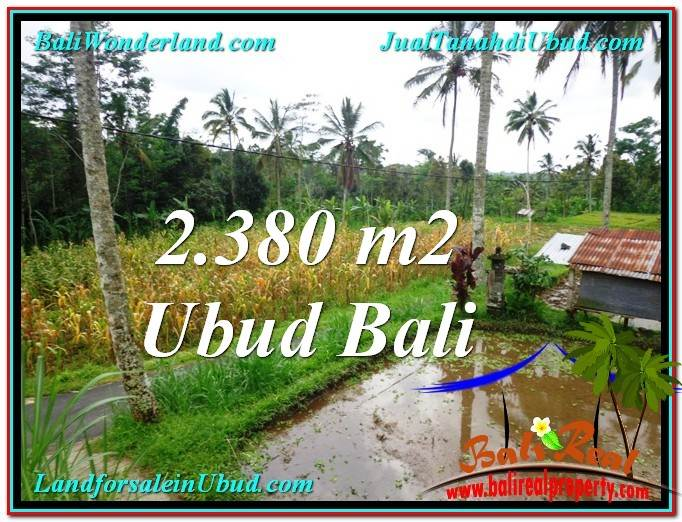 Exotic PROPERTY UBUD LAND FOR SALE TJUB567