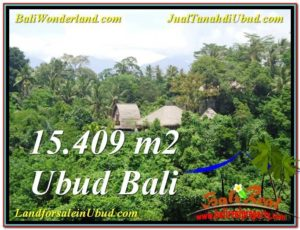 FOR SALE Affordable PROPERTY LAND IN Sentral Ubud BALI TJUB568