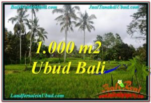 Magnificent PROPERTY LAND FOR SALE IN UBUD TJUB570