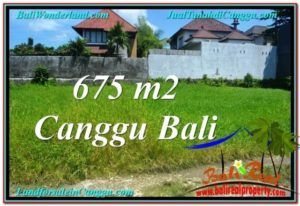 FOR SALE Affordable 675 m2 LAND IN CANGGU TJCG200