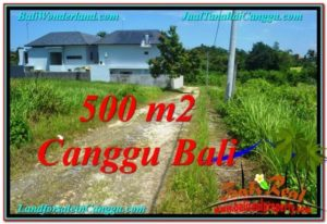 Affordable 500 m2 LAND SALE IN CANGGU TJCG201
