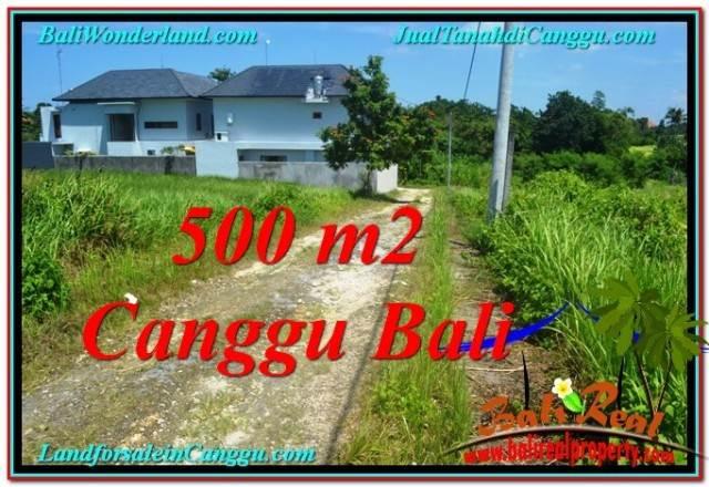 Affordable 500 m2 LAND SALE IN CANGGU TJCG201