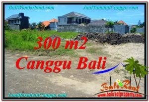 FOR SALE Magnificent PROPERTY 300 m2 LAND IN CANGGU BALI TJCG203