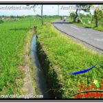 Exotic PROPERTY CANGGU BALI 2,300 m2 LAND FOR SALE TJCG209