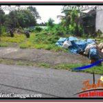 Affordable PROPERTY LAND IN Canggu Pererenan BALI FOR SALE TJCG210