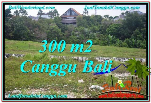 Beautiful 300 m2 LAND IN CANGGU BALI FOR SALE TJCG205