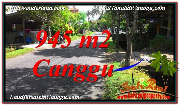 Affordable PROPERTY Canggu Pererenan BALI LAND FOR SALE TJCG210