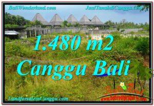 1,480 m2 LAND SALE IN Canggu Pererenan BALI TJCG212