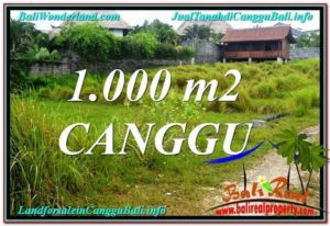 Magnificent 1,000 m2 LAND FOR SALE IN CANGGU TJCG214