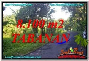 FOR SALE LAND IN TABANAN BALI TJTB329