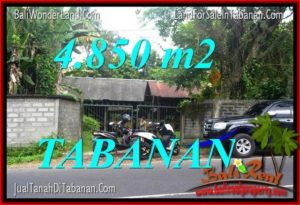 Affordable LAND IN TABANAN FOR SALE TJTB330