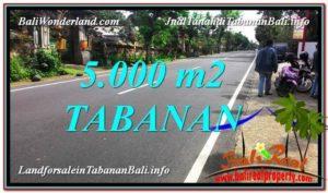 TABANAN BALI LAND FOR SALE TJTB332