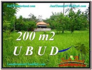 FOR SALE LAND IN Sentral Ubud TJUB584