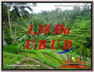 FOR SALE Magnificent PROPERTY 13,800 m2 LAND IN UBUD BALI TJUB590