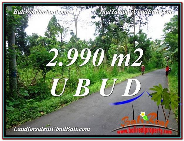 Beautiful PROPERTY 2,990 m2 LAND SALE IN Ubud Tegalalang TJUB591