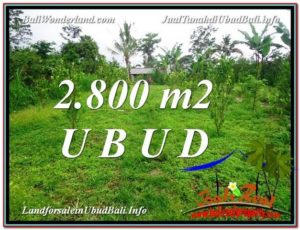 FOR SALE Affordable 2,800 m2 LAND IN UBUD TJUB592