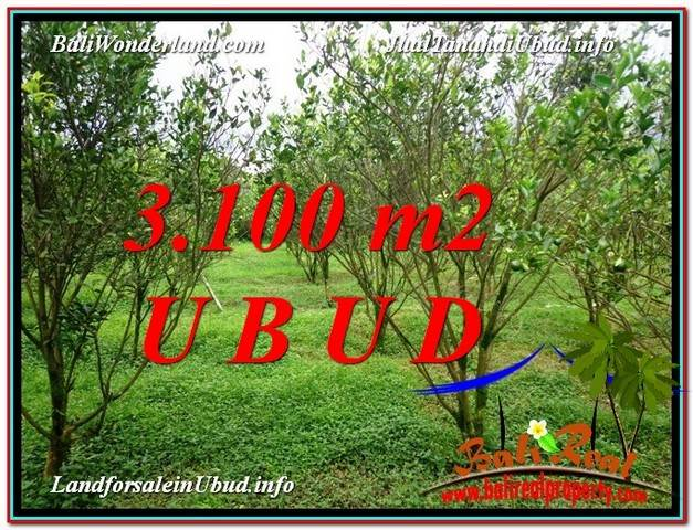 LAND SALE IN Ubud Tegalalang BALI TJUB593