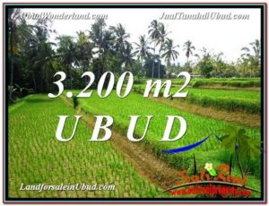 LAND FOR SALE IN Ubud Tegalalang BALI TJUB594