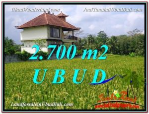 FOR SALE Affordable LAND IN Ubud Tegalalang BALI TJUB595