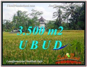 Affordable LAND IN Ubud Tegalalang BALI FOR SALE TJUB596