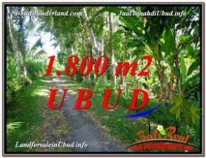 FOR SALE Beautiful PROPERTY LAND IN UBUD TJUB597