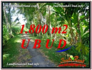 Magnificent LAND FOR SALE IN UBUD TJUB597