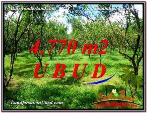 Exotic Ubud Tegalalang BALI LAND FOR SALE TJUB598