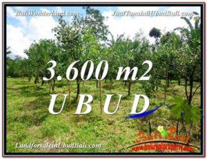 Beautiful LAND IN UBUD FOR SALE TJUB599