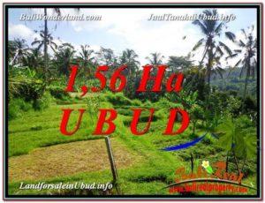 FOR SALE Affordable PROPERTY 15,600 m2 LAND IN UBUD BALI TJUB601