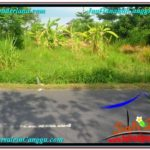 Exotic LAND SALE IN Canggu Pererenan TJCG212