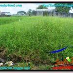Exotic PROPERTY Canggu Batu Bolong BALI LAND FOR SALE TJCG215