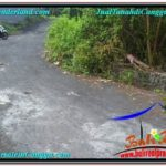 Magnificent PROPERTY LAND SALE IN Canggu Pererenan BALI TJCG216