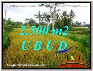 2,500 m2 LAND FOR SALE IN UBUD BALI TJUB577