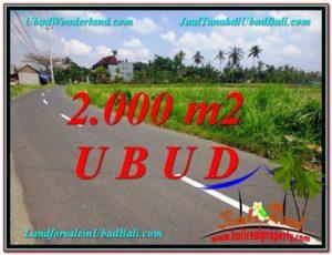 Affordable 2,000 m2 LAND SALE IN UBUD TJUB580