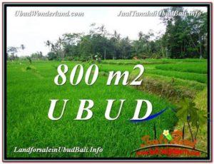 Magnificent 800 m2 LAND SALE IN UBUD BALI TJUB581