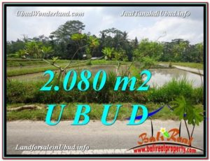 Magnificent PROPERTY LAND IN UBUD FOR SALE TJUB582