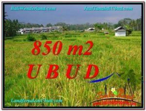 FOR SALE Beautiful 850 m2 LAND IN UBUD BALI TJUB583