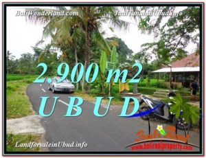 Exotic PROPERTY 2,900 m2 LAND SALE IN UBUD BALI TJUB586