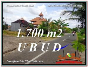 Exotic PROPERTY 1,700 m2 LAND SALE IN UBUD BALI TJUB588