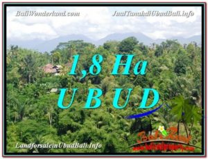Magnificent PROPERTY Ubud Tegalalang 18,000 m2 LAND FOR SALE TJUB589