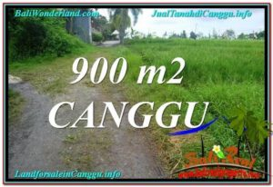 Magnificent CANGGU 900 m2 LAND FOR SALE TJCG215