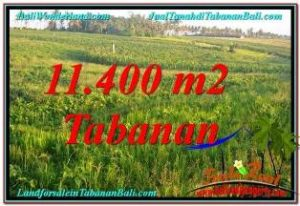 Exotic PROPERTY LAND FOR SALE IN Tabanan Selemadeg BALI TJTB339