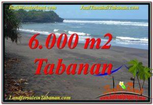 FOR SALE Beautiful LAND IN TABANAN TJTB345