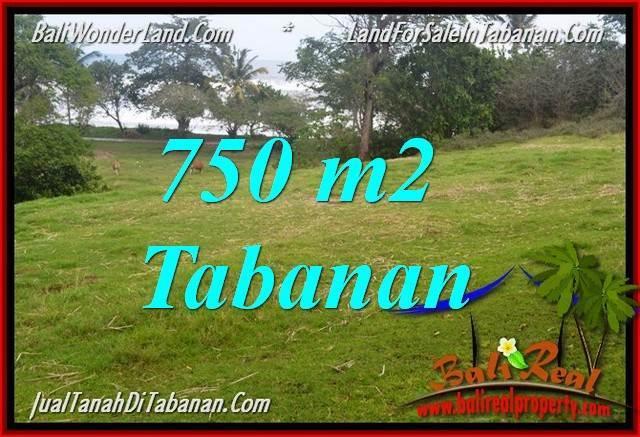 Affordable 750 m2 LAND FOR SALE IN TABANAN BALI TJTB346