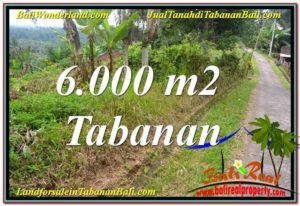 Beautiful PROPERTY Tabanan Selemadeg BALI LAND FOR SALE TJTB349