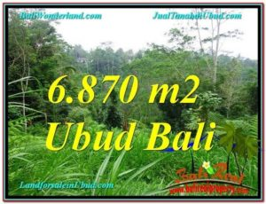 Exotic LAND FOR SALE IN Ubud Tampak Siring BALI TJUB602